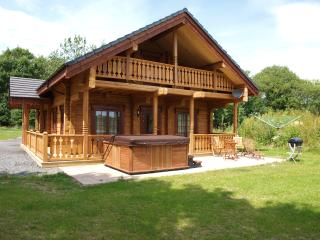 Authentic log cabin in the heart of the Welsh countryside., Carno