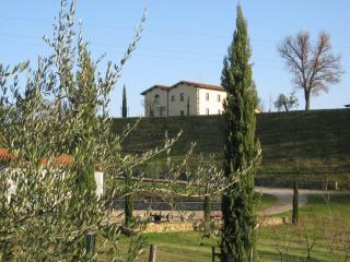AZIENDA AGRICOLA IL CHIUSO DI LEONARDO MORONI, Vicchio