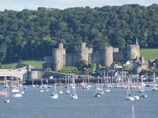 Conwy Castle View