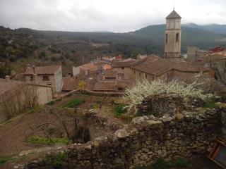 Cal Estevet, Arbolí