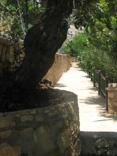 Private pathway to the villa.