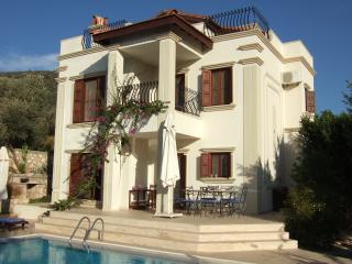 Suro Evi Extremely private villa not overlooked.  Large pool.  Beautiful views