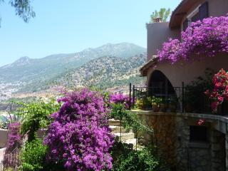 Exterior of villa and views