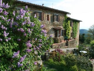 PODERE L'AQUILA- APT. NR. 7, Gaiole in Chianti