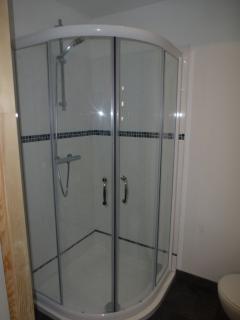 Downstairs en-suite shower room