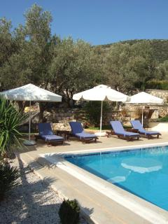 Huge patio with gardens beyond nestled in an olive grove.