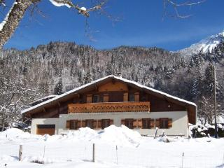 Outstanding detached ski chalet in Morzine Avoriaz area with sauna & games room