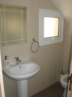 Downstairs Cloakroom with Toilet and Wash Hand Basin