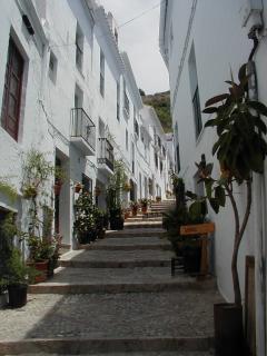 Calle Zacatan