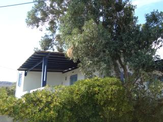 Andros Summer House