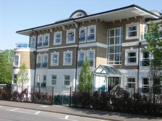 4 Dene House, Windsor