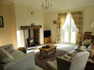 The Lounge with log burner