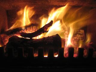 Warm and cosy, the log burner in Swallows Nest is just the thing.