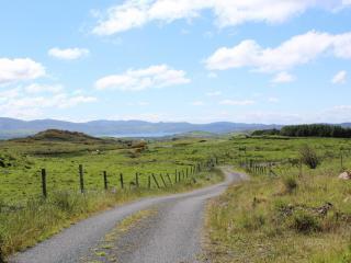 Laneway to House