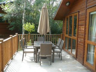 The Deck Area