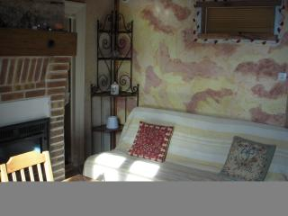 le salon avec la cheminée