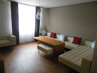 Beautiful 2 rooms in Prague 1, Praag