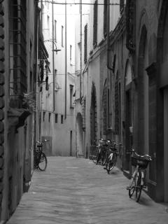 Lucca. Fantastic City, bike hire a must.