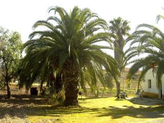 Casa rural en Andalucía, Villamartin