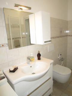 Vanity, toilet and bidet shower.
