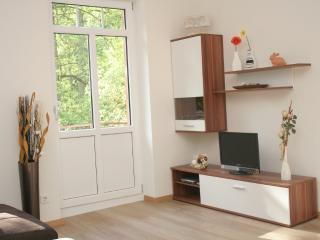 Wald Villa Üssbach Wohnbereich