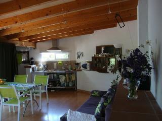 Interior salón comedor con rincón de cocina