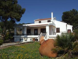 Amazing villa by the sea, Pyrgi
