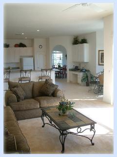 Large Luxury Lounger Area