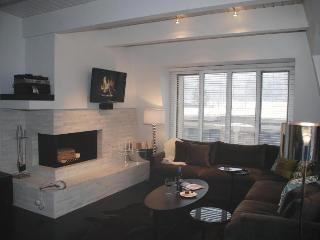 Luxury Living in Downtown Aspen 120 yds to Gondola