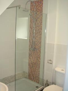The rain shower in the downstairs shower room