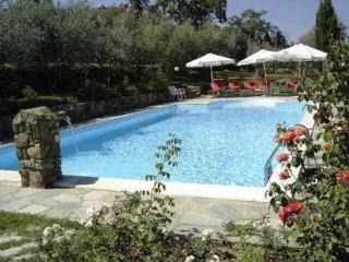 Villa Benvenuti, 30 acres, private pool, WIFI!, Pergine Valdarno
