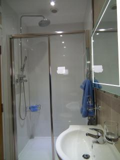 Shower in twin room, much the same in the king room