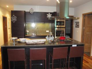 Apartment Le Globe Argentiere Modern Kitchen