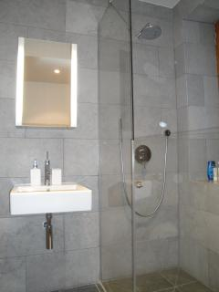 Apartment Le Globe Argentiere Shower room