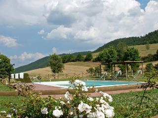 Umbria villa (BFY13579), Fabro