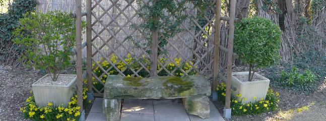 Seating area with daffs and jasmine