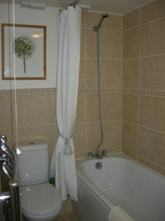 Bathroom, on the downstairs level, with shower.