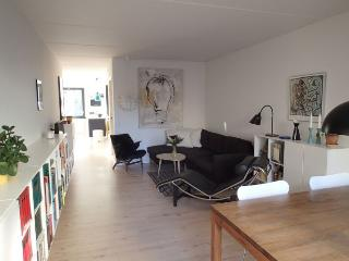 Large Copenhagen apartment at peaceful Christianshavn