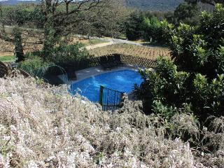 Golfe de St-Tropez - Studio 2/4 pers avec piscine, Cogolin