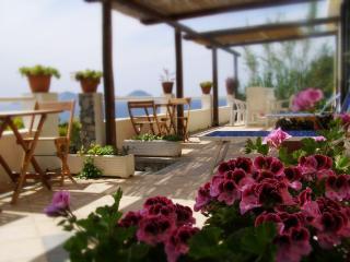 Punta Vardella, Insel Ponza