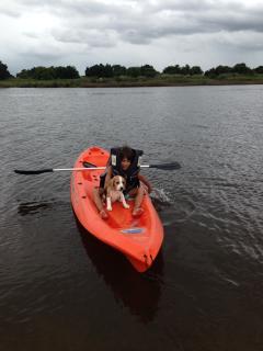 kayac en el arroyo incluido