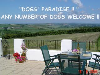 DOGS' PARADISE -BADGER COTTAGE