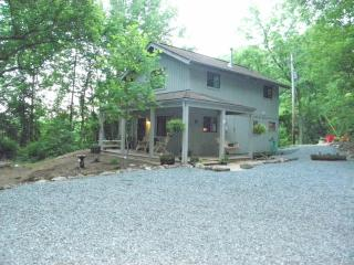 Peaceful Seclusion in The Blue Ridge,Pet friendly, Lovingston