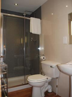 Ensuite shower room with Trevi shower