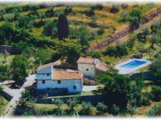 Agriturismo Montereggi con piscina - appartamento Saletta