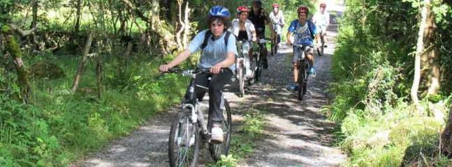 Numerous cycle routes nearby, fun for all the family!