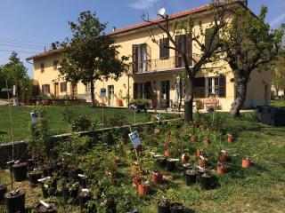 Cascina Vicentini Monferrato - Rose Room