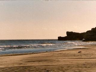SUMMER --- OFFER ---BEACH-GARDEN-Torredembarra