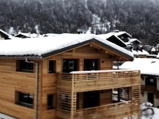 APPARTEMENT DE L'ARVE, Chamonix