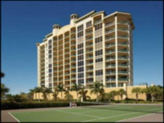Large Fort Myers Condo (Monthly rental or longer), Masaryktown